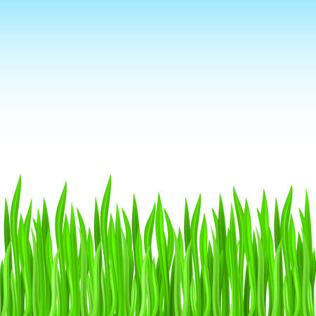 green grass. Green design Stock Vector - 9262037