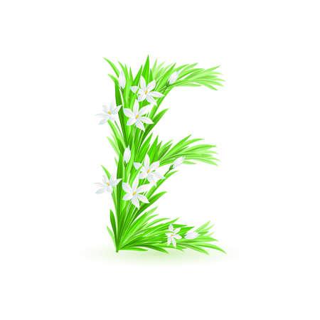 grass font: One letter of spring flowers alphabet - E. Illustration on white background