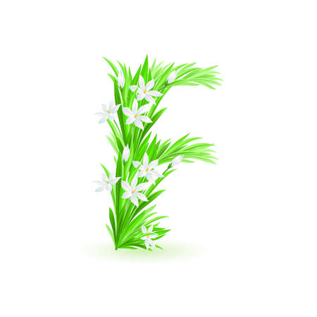 One letter of spring flowers alphabet - F. Illustration on white background Stock Vector - 9262083