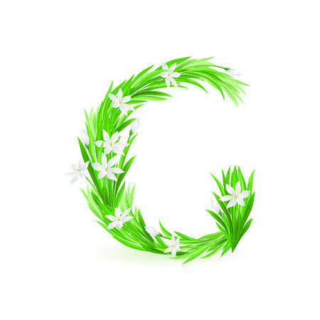 One letter of spring flowers alphabet - G. Illustration on white background Stock Vector - 9262110