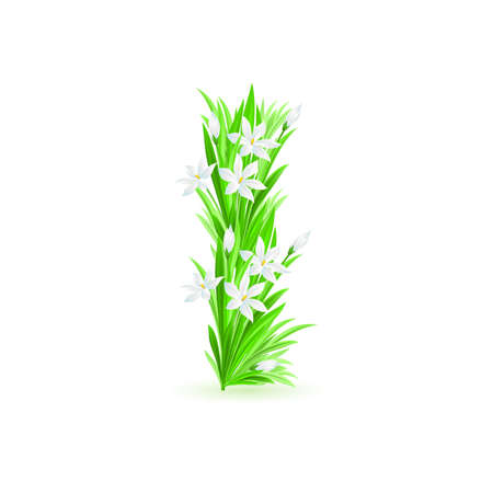 One letter of spring flowers alphabet - I. Illustration on white background Stock Vector - 9262077