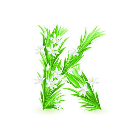One letter of spring flowers alphabet - K. Illustration on white background Vector