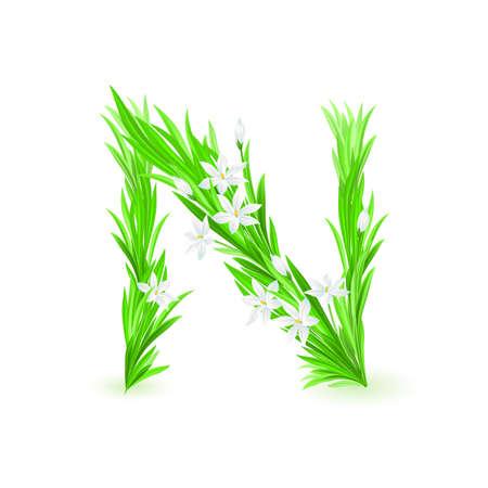beautiful alphabet: One letter of spring flowers alphabet - N. Illustration on white background