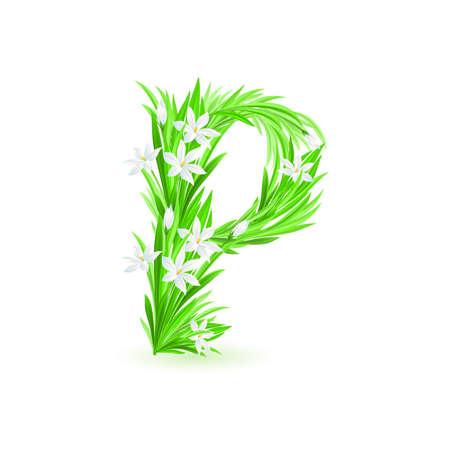 One letter of spring flowers alphabet - P. Illustration on white background Stock Vector - 9262112