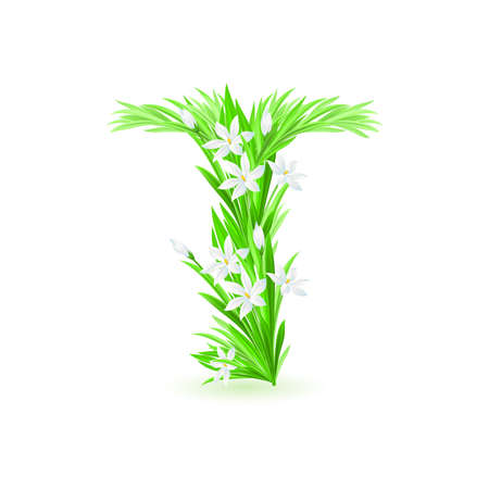 One letter of spring flowers alphabet - T. Illustration on white background Stock Vector - 9262091