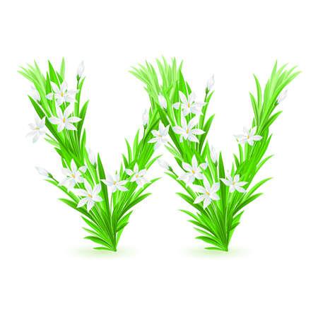One letter of spring flowers alphabet - W. Illustration on white background Vector