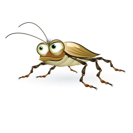 cockroach: Cartoon beetle with a mysterious look. Illustration on white background  Illustration