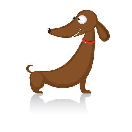 Teckel caricature race des drôles de chien.  Illustration sur fond blanc