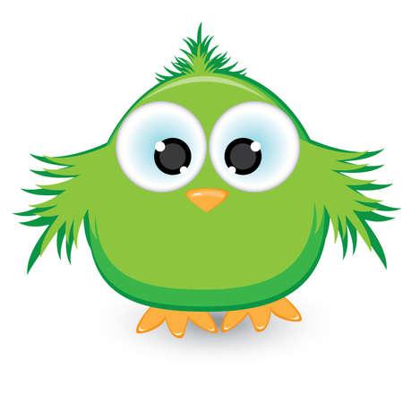 veréb: Cartoon green sparrow. Illustration on white background