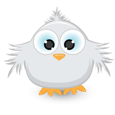 veréb: Cartoon gray sparrow. Illustration on white background