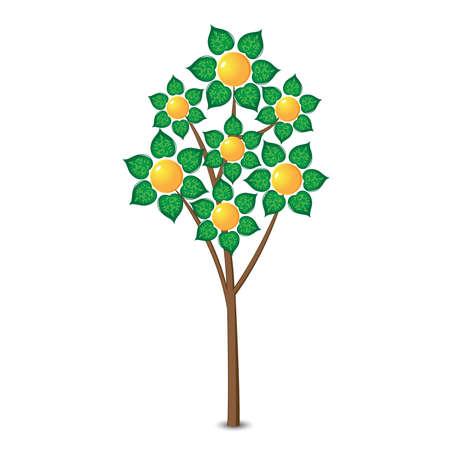 lemon tree: Abstract lemon tree. Illustration on white background