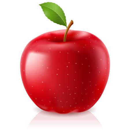 맛있는 빨간 사과. 흰색 배경에 그림 일러스트