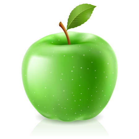gr�ne apfel: Green Apple. Illustration auf wei�em Hintergrund Illustration