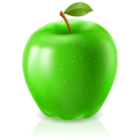 Green apple. Illustration on white background for design Vector