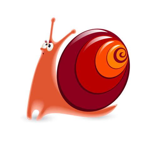 Cartoon Snail. Illustration isolated on white background. Vector