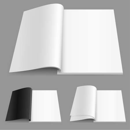 blank brochure: Realistic magazine set number two. Illustration on white background for design.