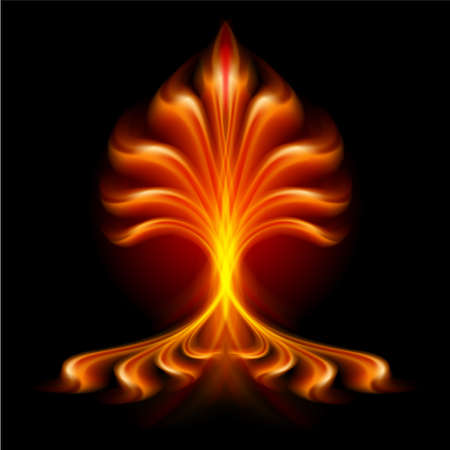 buda: Flor de Fuego. Ilustraci�n aislada sobre fondo negro