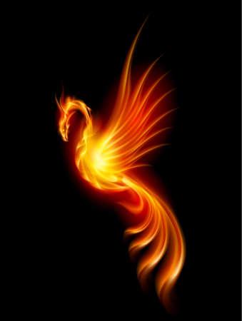 night bird: Burning Phoenix. Illustration isolated over black background