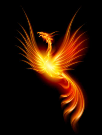 fantasy art: Beautiful Burning Phoenix. Illustration isolated over black background  Stock Photo