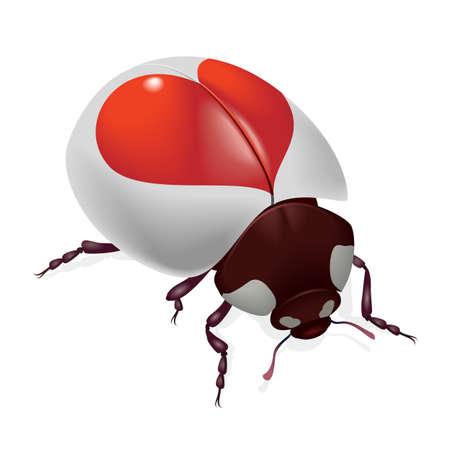 lady beetle: Ladybug with red hearts. Illustration on white background