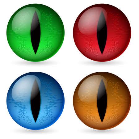 eyes: Bunte Drachen Augen. Illustration des Designers auf einem wei�en Hintergrund
