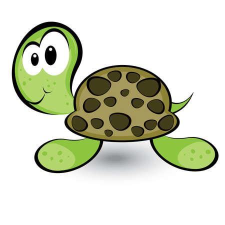 tortue de terre: Tortue de bande dessin�e gay. Illustration sur fond blanc pour la conception