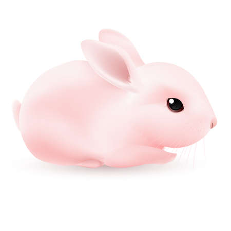 Pink Rabbit. Illustration on white background for design Vector