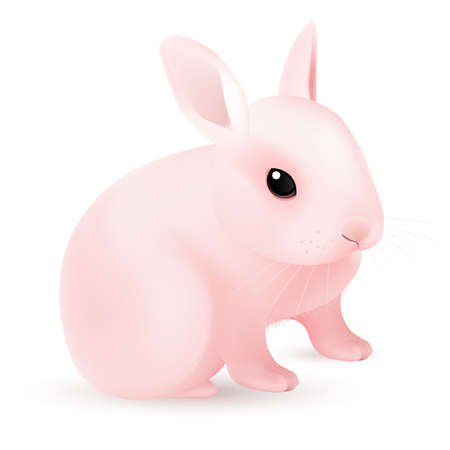 Pink Easter Bunny. Illustration on white background for design  Vector
