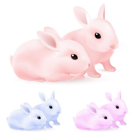lepre: Set di conigli di Pasqua. Illustrazione su sfondo bianco per la progettazione Vettoriali