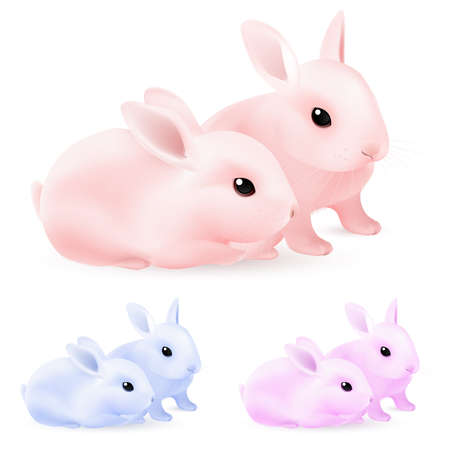 Set of Easter rabbits. Illustration on white background for design Vector