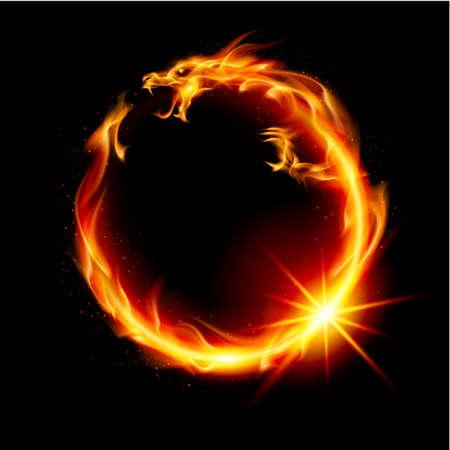 dragones: Dragón de Fuego. Resumen Ilustración sobre fondo negro para el diseño.