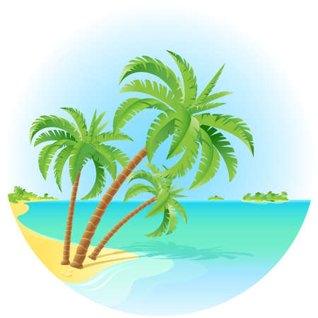 Coconut palm trees on a island. Illustration on white. Vector