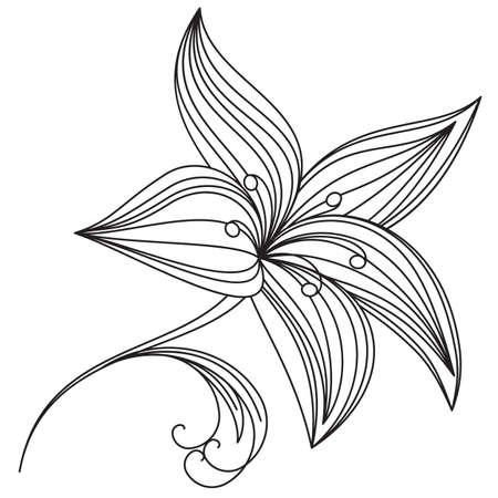 Abstract beautiful flower of lily. Illustration on white background for design  Vector