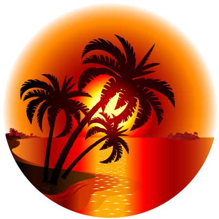 fruta tropical: Puesta de sol en una isla tropical. Ilustraci�n sobre fondo blanco