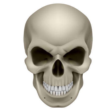 dientes sucios: Cr�neo Humano Ponte en mi lugar. La emoci�n de la ira. Ilustraci�n en blanco.