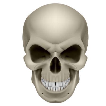 Zakręcony ludzkiej czaszki. Gniew. Ilustracja na białym tle.