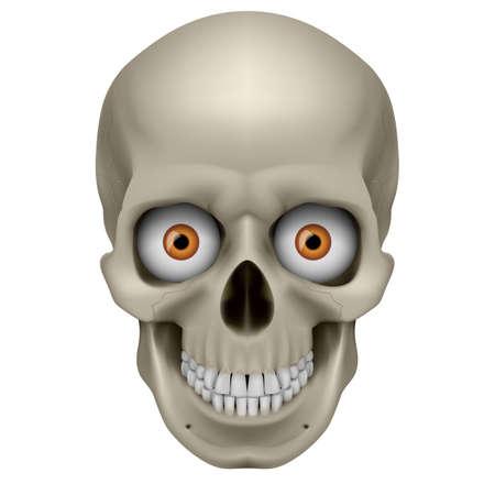 Cráneo Humano Ponte en mi lugar. Ilustración sobre fondo blanco Ilustración de vector