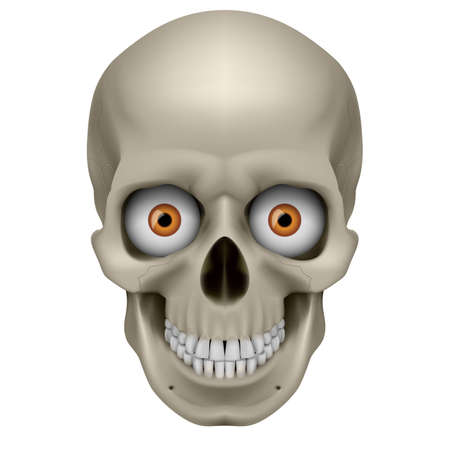 Freaky Human Skull. Illustration on white background Vector
