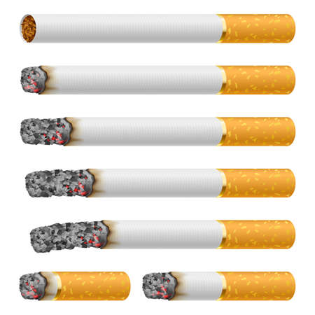 ash: Set of Cigarettes During Different Stages of Burn. Each is isolated on white.