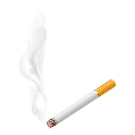 cigar smoke: Realistic burning cigarette.  Illustration on white background