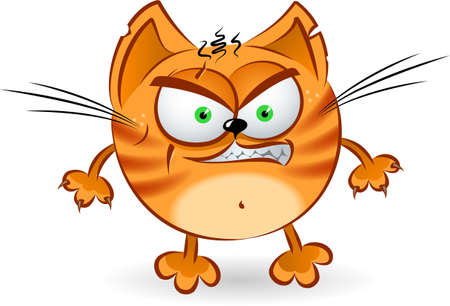angry cartoon: The angry orange cartoon cat. Illustration on white background