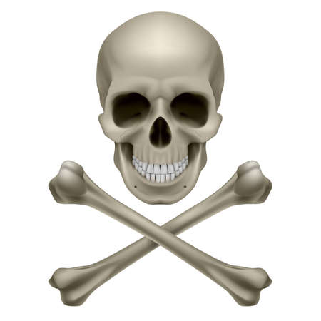 human bones: Skull and crossbones. Illustration on white background Illustration