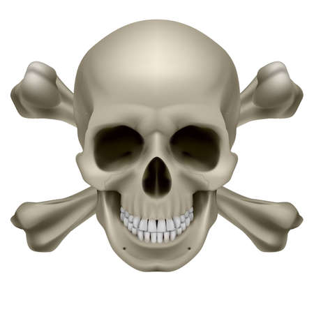 Realistic skull and bones. Illustration on white background Vector