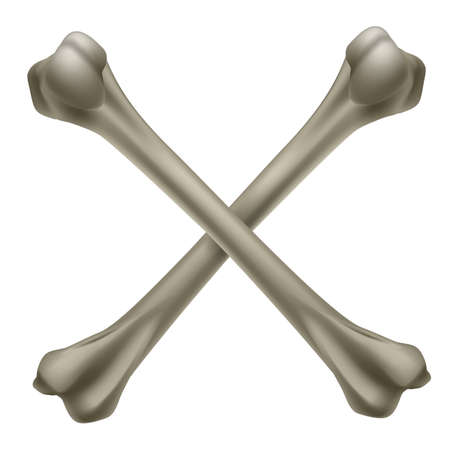 Two realistic crossbone. Illustration on white background Vector