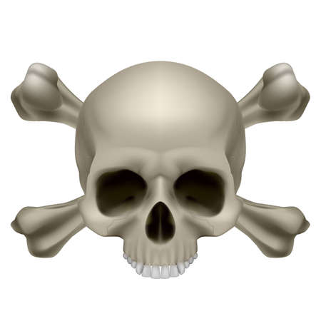 Human skull and crossbones. Illustration on white background Vector