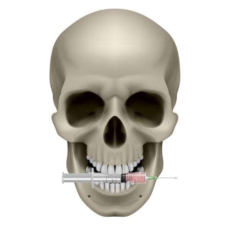 Crâne réaliste avec une cigarette. Illustration sur fond blanc Vecteurs