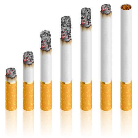 tobacco: Set of Cigarettes During Different Stages of Burn.