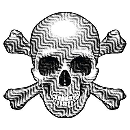 tete de mort: Cr�ne et os crois�s chiffre. Illustration sur fond blanc. Illustration