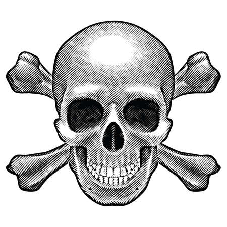 Skull and crossbones figure. Illustration on white background.  Vector