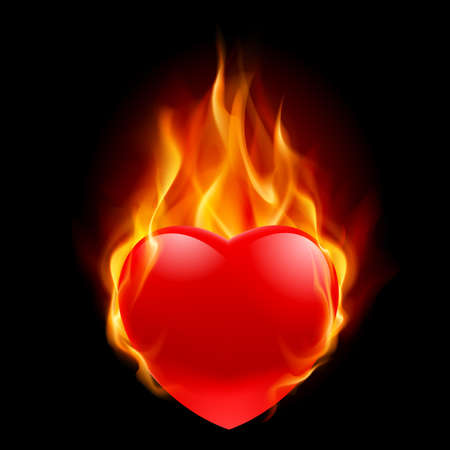 red love heart with flames: Burning Heart. Ilustraci�n para el dise�o sobre fondo negro